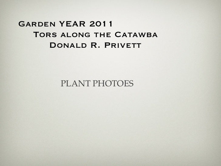 Garden YEAR 2011  Tors along the Catawba     Donald R. Privett       PLANT PHOTOES