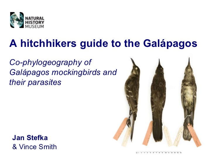 Jan Stefka & Vince Smith A hitchhikers guide to the Galápagos Co-phylogeography of Galápagos mockingbirds and their parasi...