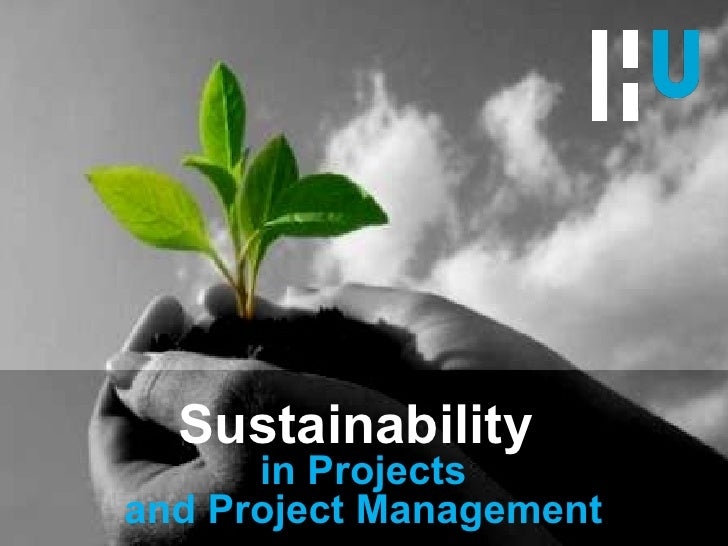 Sustainability  in Projects and Project Management