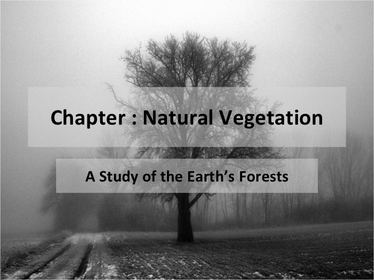 Chapter : Natural Vegetation A Study of the Earth's Forests