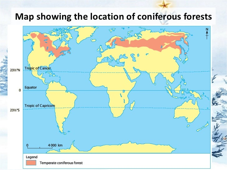 2011 sec 3 elective geography chapter 03 types of natural vegetation 91 map gumiabroncs Choice Image