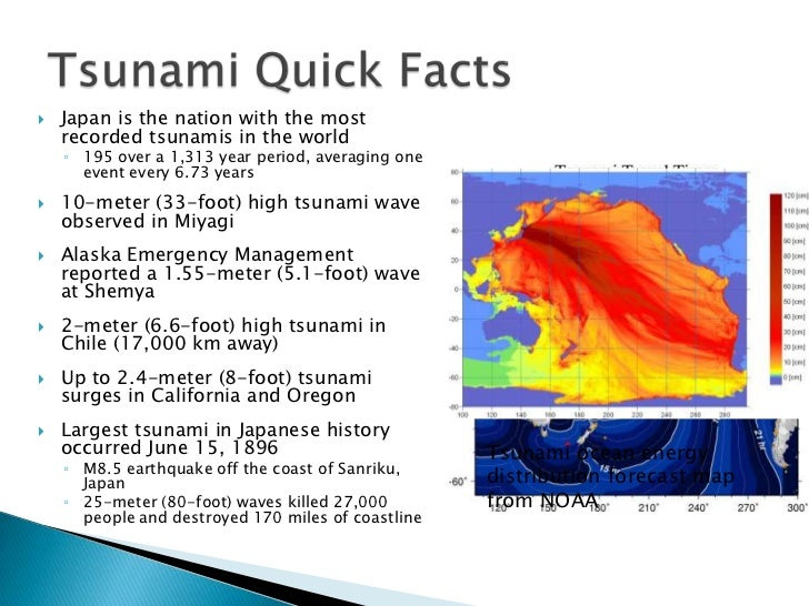 Fun Facts For Kids About Tsunami