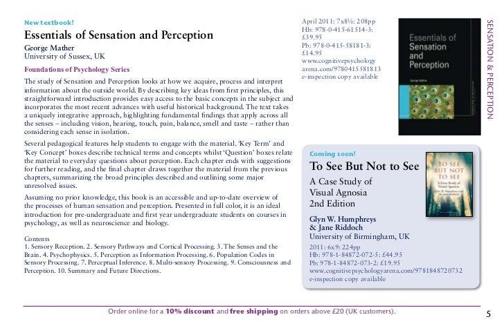 Sensation and perception essay