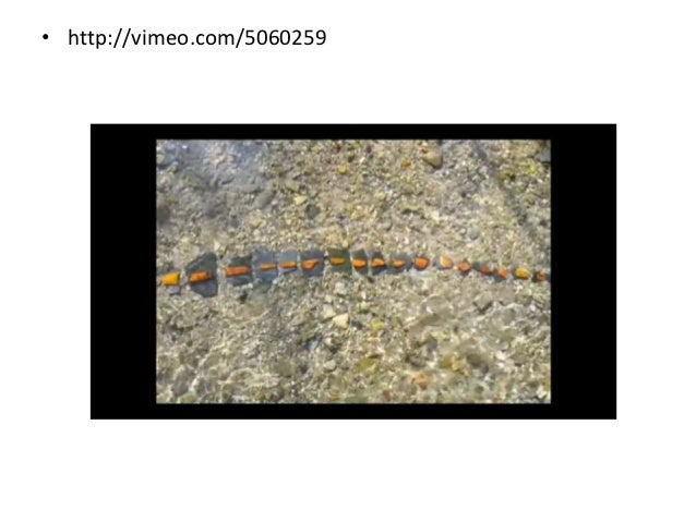 • Andy Goldsworthy - Naturally beautiful  http://www.youtube.com/watch?feature=player_embedded&  v=fUpVf-7i75I
