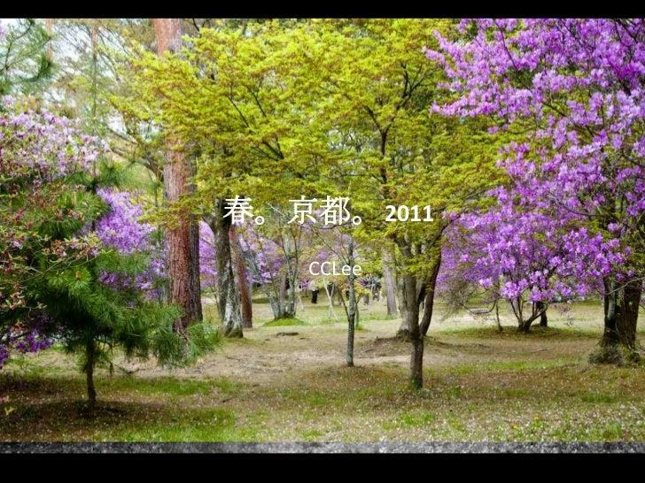 春。京都。2011<br />CCLee<br />