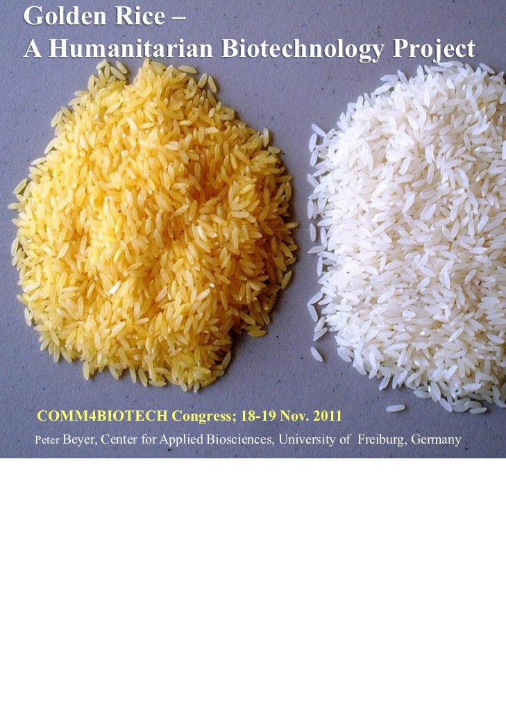 Golden Rice – A Humanitarian Biotechnology Project