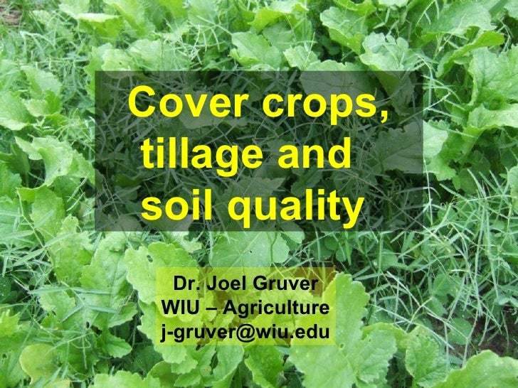 Cover crops, tillage and  soil quality   Dr. Joel Gruver WIU – Agriculture [email_address]