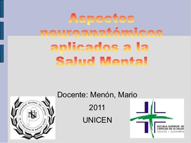 Docente: Menón, Mario        2011      UNICEN