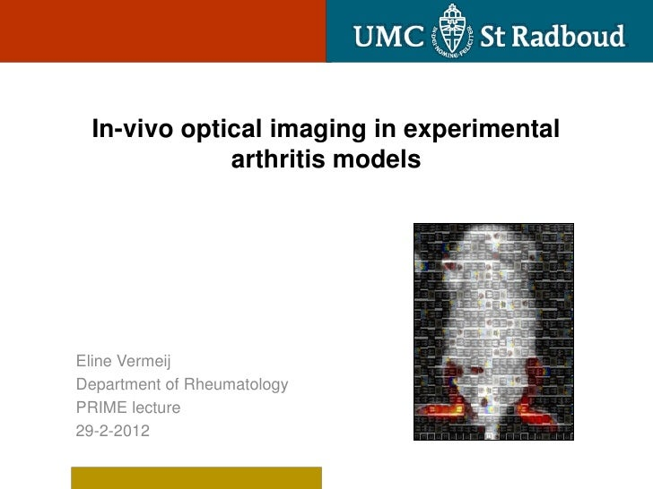 In-vivo optical imaging in experimental             arthritis modelsEline VermeijDepartment of RheumatologyPRIME lecture29...