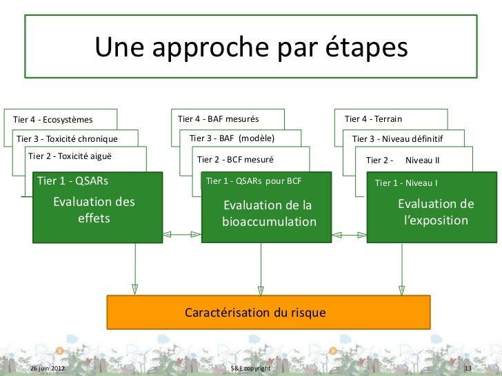 Une approche par étapesTier 4 - Ecosystèmes          Tier 4 - BAF mesurés            Tier 4 - TerrainTier 3 - Toxicité chr...