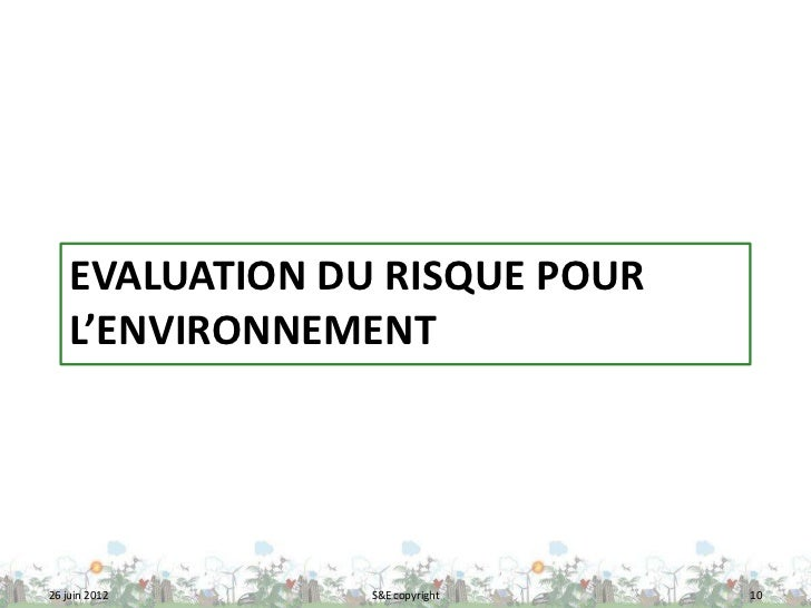 EVALUATION DU RISQUE POUR    L'ENVIRONNEMENT26 juin 2012     S&E copyright   10