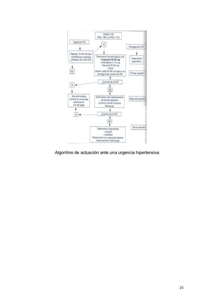 (2012 10-02) hipertensión arterial esencial (doc)
