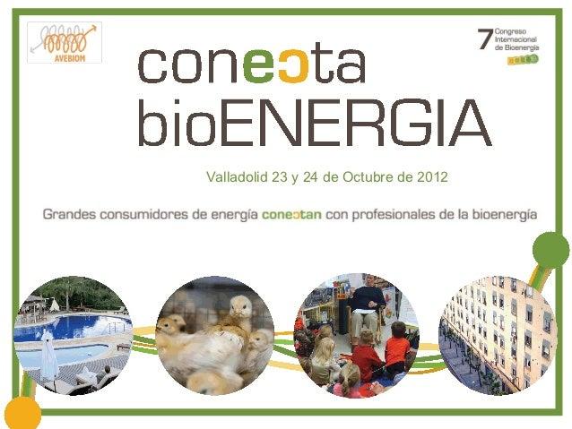 Valladolid 23 y 24 de Octubre de 2012