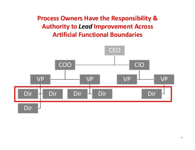 CEO COO VP Dir Dir Dir VP Dir Dir CIO VP VP Dir 29 Process Owners Have the Responsibility &   Authority to Lead Improvemen...