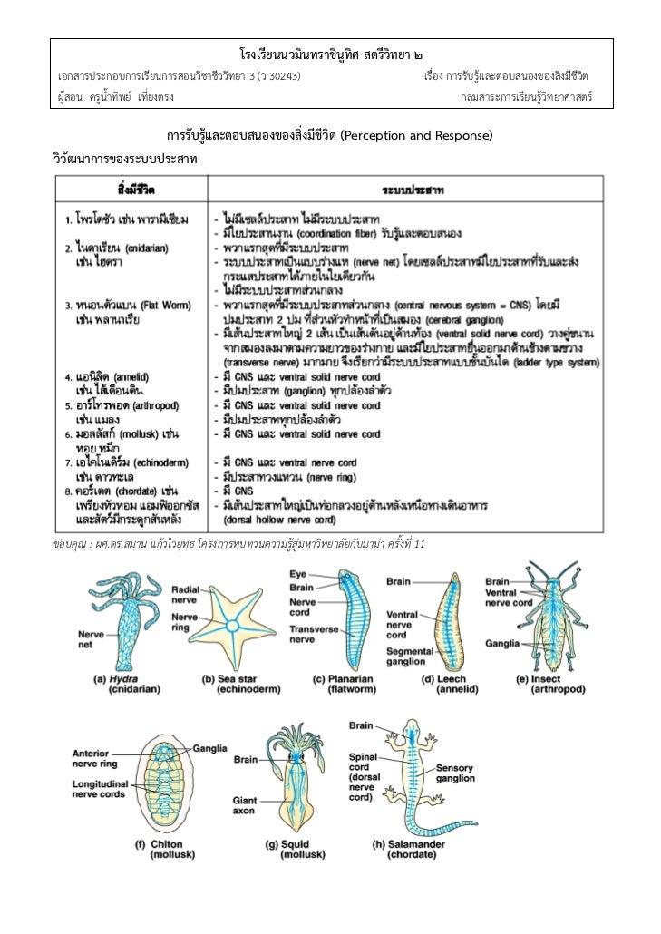 -1-ู                                          โรงเรียนนวมินทราชินทิศ สตรีวิทยา ๒ เอกสารประกอบการเรียนการสอนวิชาชีววิทยา 3 ...
