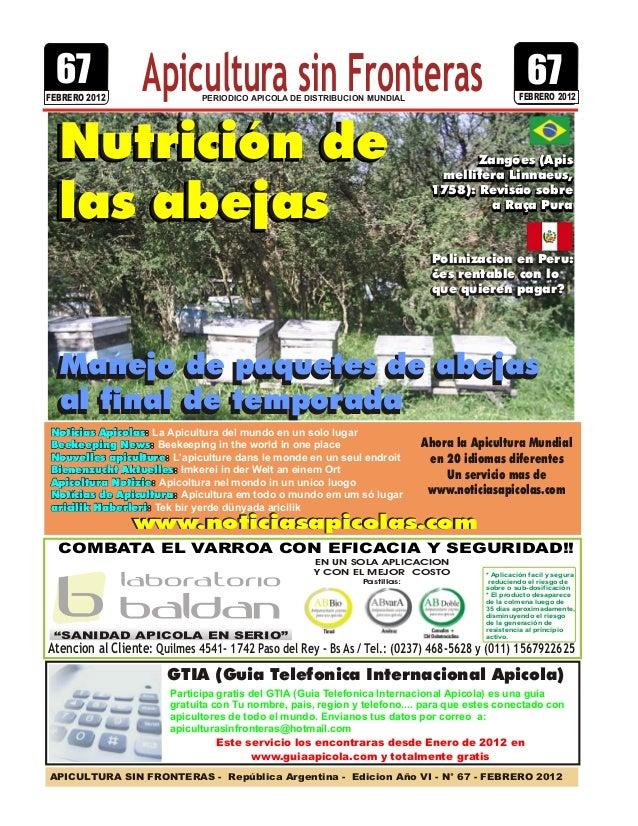 APICULTURA SIN FRONTERAS - República Argentina - Edicion Año VI - N° 67 - FEBRERO 2012 PERIODICO APICOLA DE DISTRIBUCION M...