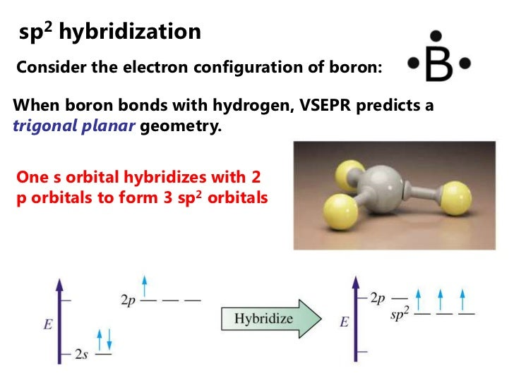 sp2 hybridizationConsider the electron configuration of boron:When boron bonds with hydrogen, VSEPR predicts atrigonal pla...