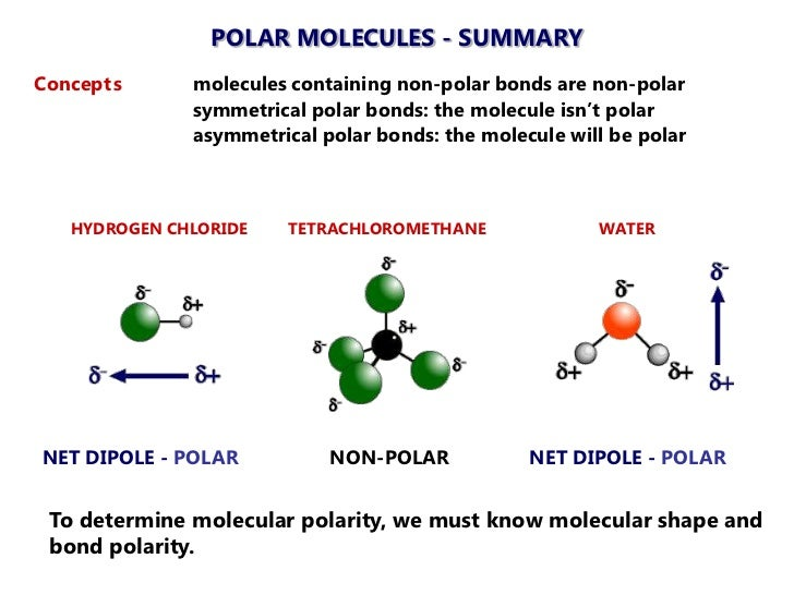 2012 Molecule Polarity