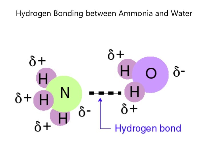 the physical properties of water during hydrogen bonding H2o2 | cid 784 - structure, chemical names, physical and chemical properties  hydrogen bond acceptor count: 2  determination of hydrogen peroxide in water.