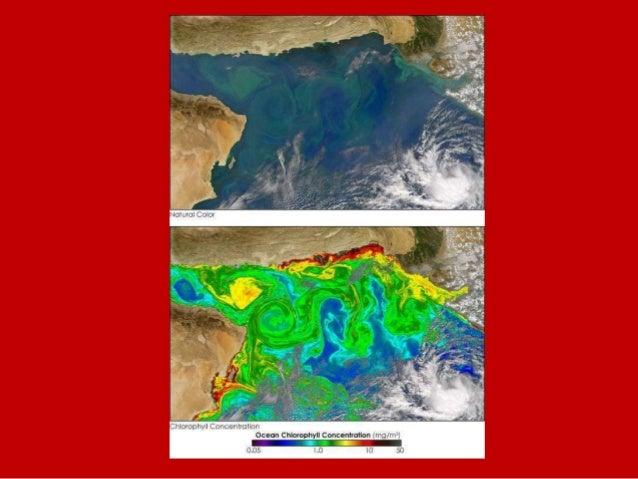 inverno estate inverno estate Nord-Est Sud-Ovest Mobilità Verticale dei Cacciatori-Raccoglitori Olocenici