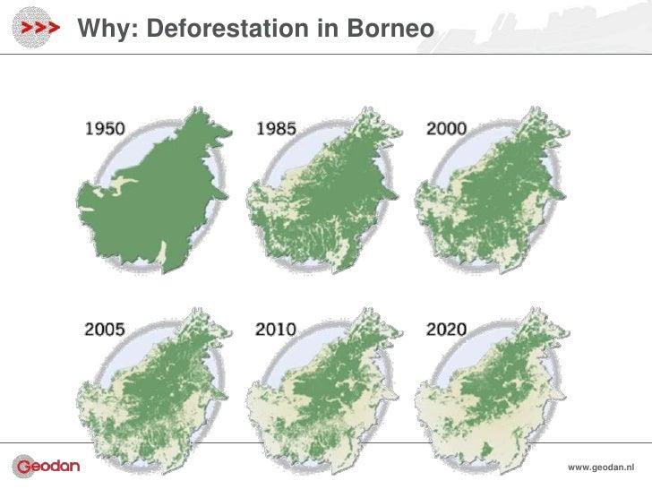Why: Deforestation in Borneo                               www.geodan.nl                                 www.geodan.nl