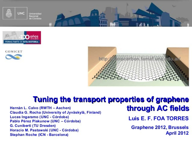 http://nanocarbon.famaf.unc.edu.ar/            Tuning the transport properties of grapheneHernán L. Calvo (RWTH – Aachen)C...