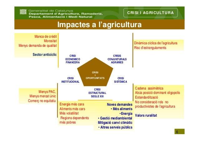 CRISI I AGRICULTURA                             Impactes a l'agricultura         Manca de crèdit               Morositat  ...