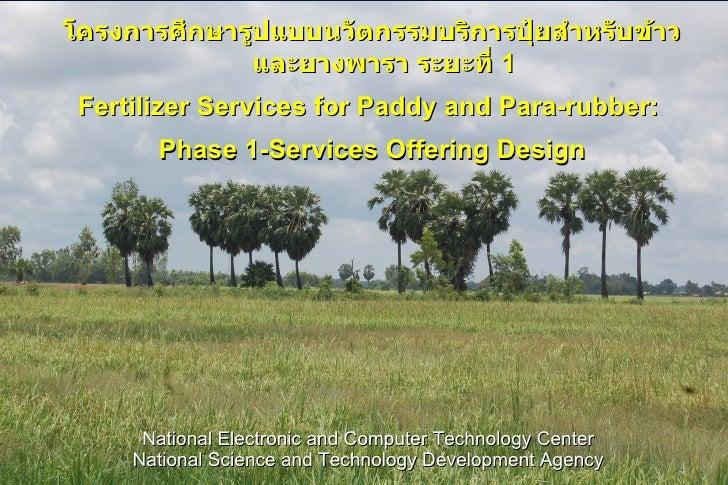 โครงการศึกษารูปแบบนวัตกรรมบริการปุ๋ยสำาหรับข้าว              และยางพารา ระยะที่ 1 Fertilizer Services for Paddy and Para-r...