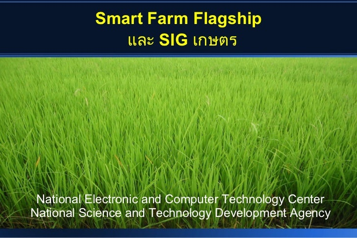 Smart Farm Flagship             และ SIG เกษตร National Electronic and Computer Technology CenterNational Science and Techn...