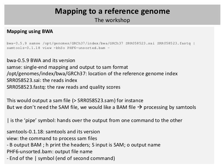 Bwa single end mapping