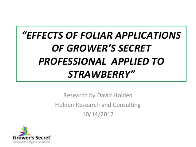 """""""EFFECTS OF FOLIAR APPLICATIONS      OF GROWER'S SECRET   PROFESSIONAL APPLIED TO         STRAWBERRY""""         Research by ..."""