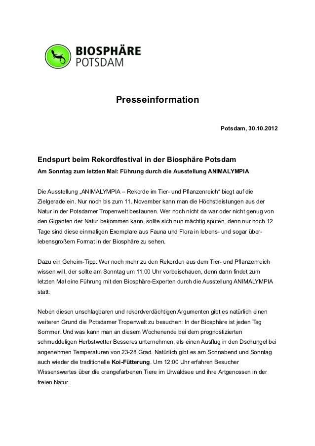 Presseinformation                                                                    Potsdam, 30.10.2012Endspurt beim Reko...