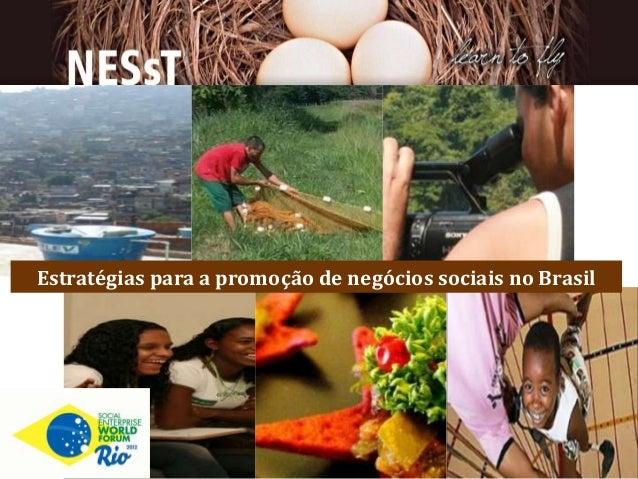 Estratégias para a promoção de negócios sociais no Brasil