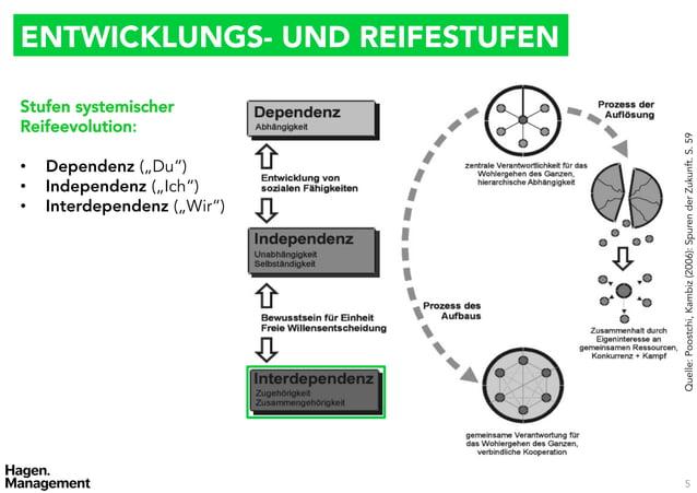 ENTWICKLUNGS- UND REIFESTUFENStufen systemischerReifeevolution:                                 Quelle: Poostchi, Kambiz (...