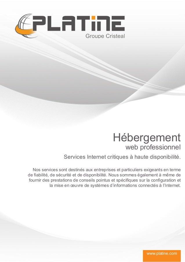 Hébergement                                                    web professionnel                   Services Internet criti...