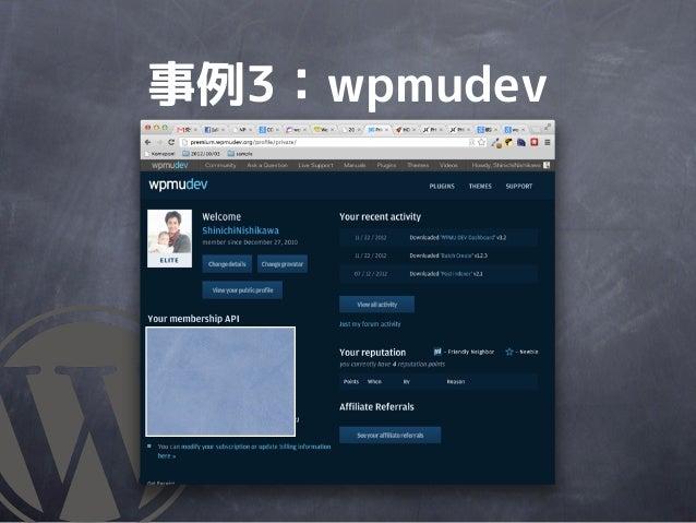 事例3:wpmudev