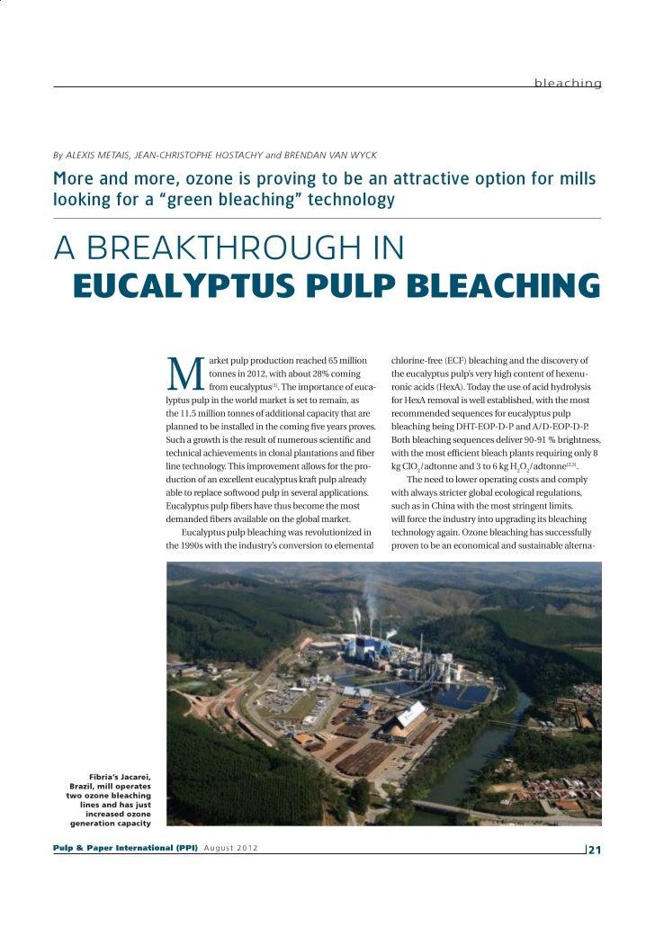 A Breakthrough In Eucalyptus Pulp Bleaching   Ppi