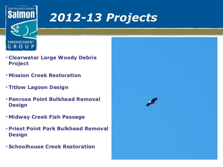 2012-13 Projects <ul><li>Clearwater Large Woody Debris Project  </li></ul><ul><li>Mission Creek Restoration </li></ul><ul>...