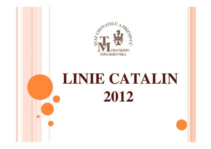 LINIE CATALIN     2012