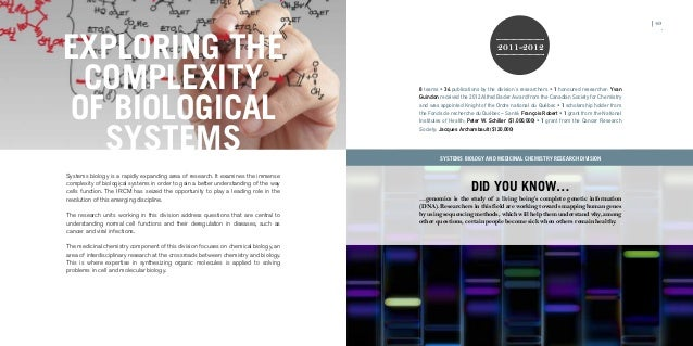 The dissertation journey pdf