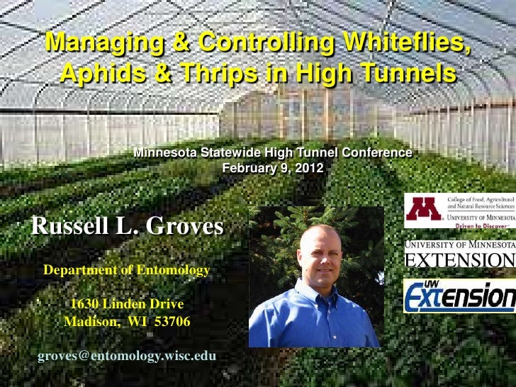 Managing & Controlling Whiteflies,  Aphids & Thrips in High Tunnels             Minnesota Statewide High Tunnel Conference...