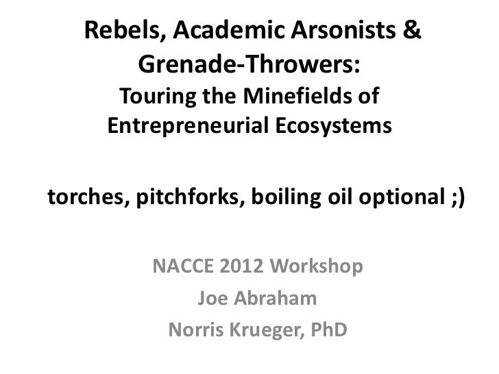 Rebels, Academic Arsonists &       Grenade-Throwers:       Touring the Minefields of      Entrepreneurial Ecosystemstorche...