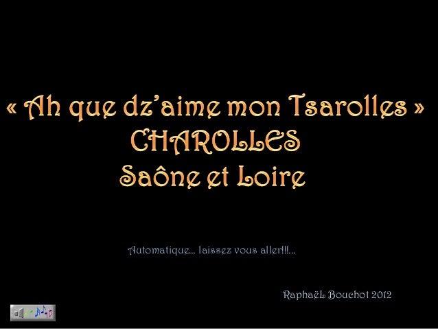 Automatique… laissez vous aller!!!...                                  RaphaëL Bouchot 2012