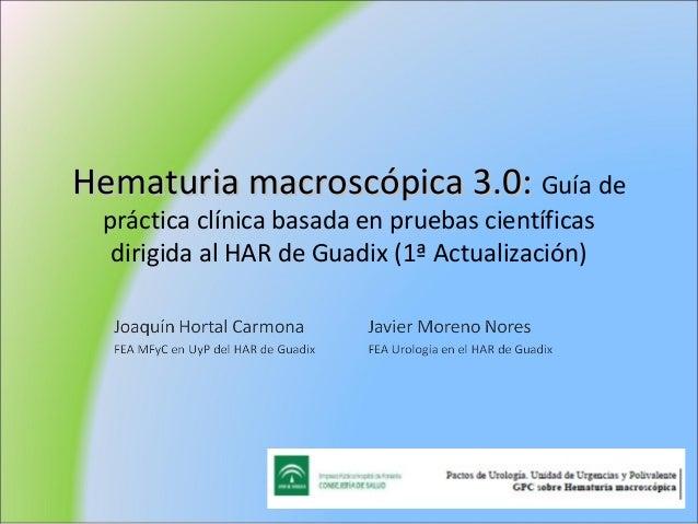 Hematuria macroscópica 3.0: Guía de práctica clínica basada en pruebas científicas  dirigida al HAR de Guadix (1ª Actualiz...