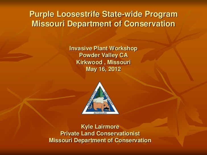 Purple Loosestrife State-wide ProgramMissouri Department of Conservation           Invasive Plant Workshop               P...