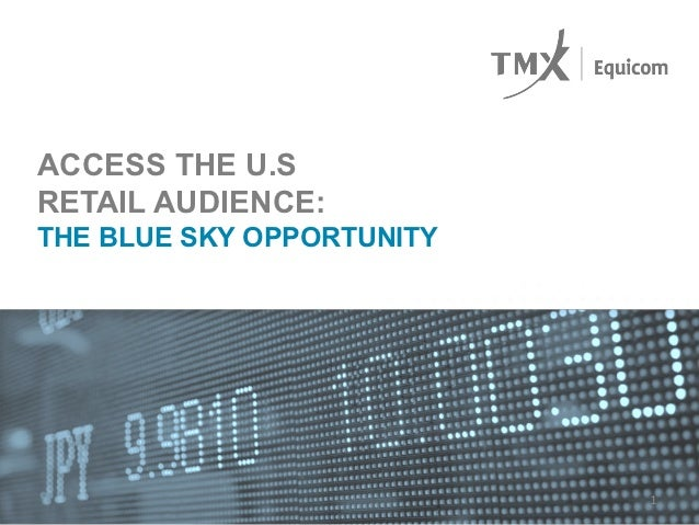 ACCESS THE U.SRETAIL AUDIENCE:THE BLUE SKY OPPORTUNITY                           1