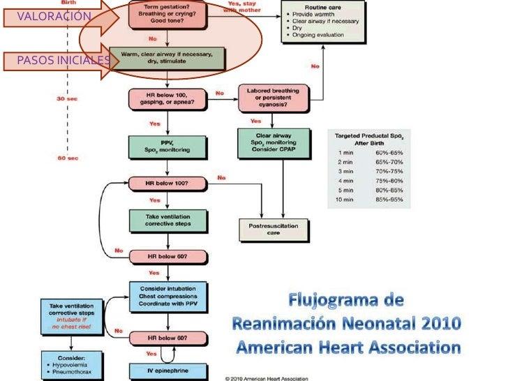 reanimacion neonatal 7ma edicion pdf descargar
