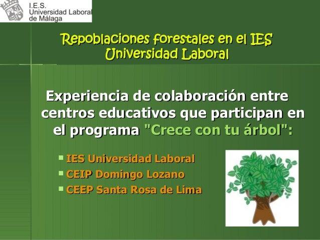 Repoblaciones forestales en el IES        Universidad Laboral Experiencia de colaboración entrecentros educativos que part...