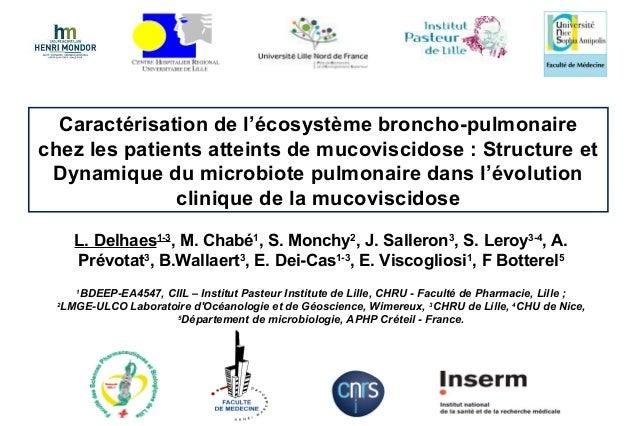 Caractérisation de l'écosystème broncho-pulmonaire chez les patients atteints de mucoviscidose : Structure et Dynamique du...