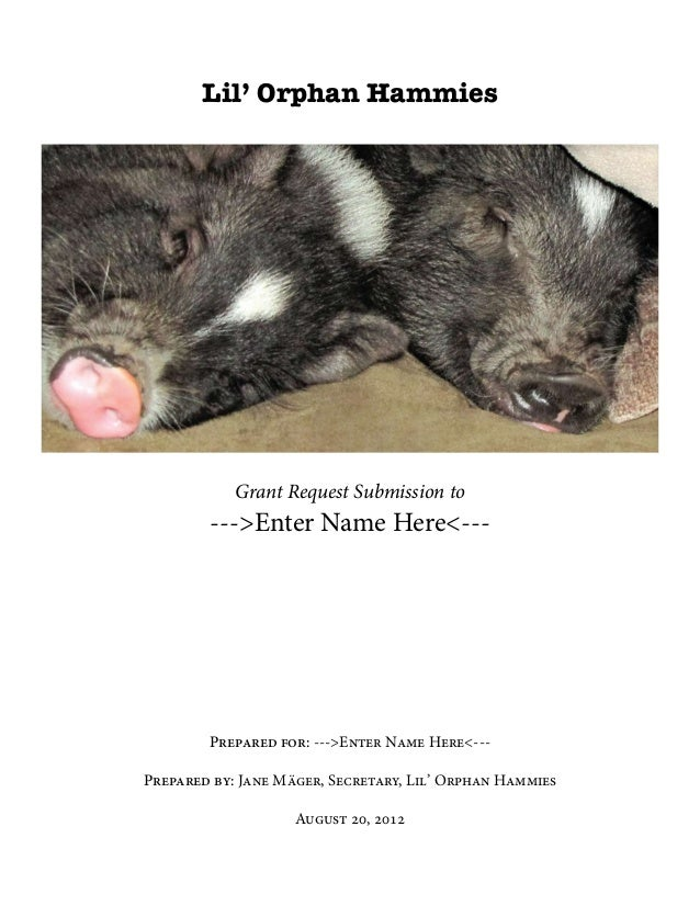 Lil' Orphan Hammies            Grant Request Submission to        --->Enter Name Here<---        Prepared for: --->Enter N...